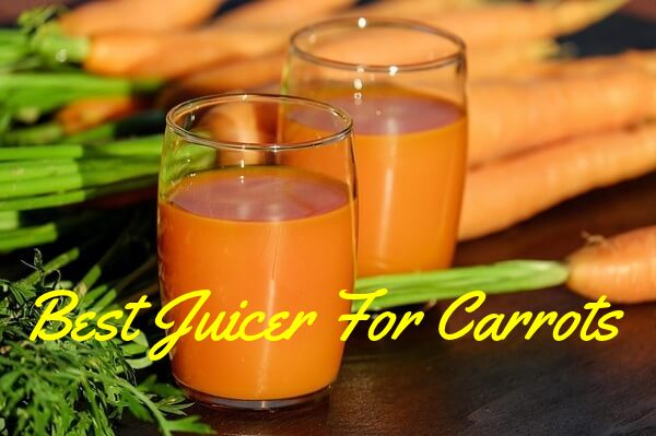 Best Juicer For Carrots Review Updated (Complete Buying