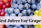 Best Juicer for Grapes