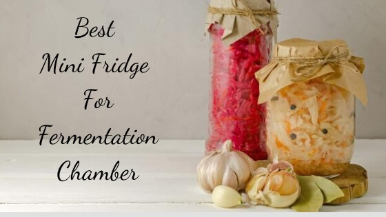 best mini fridge for fermentation chamber