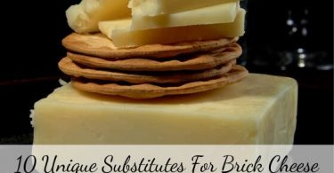 substitutes for Brick cheese