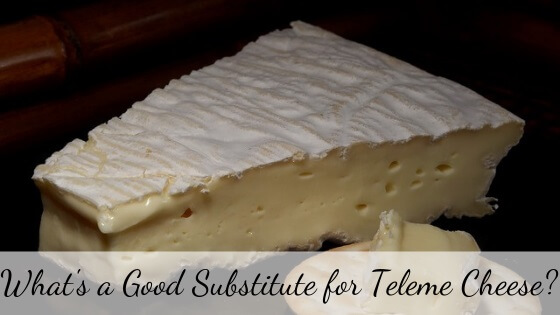 Teleme cheese substitute