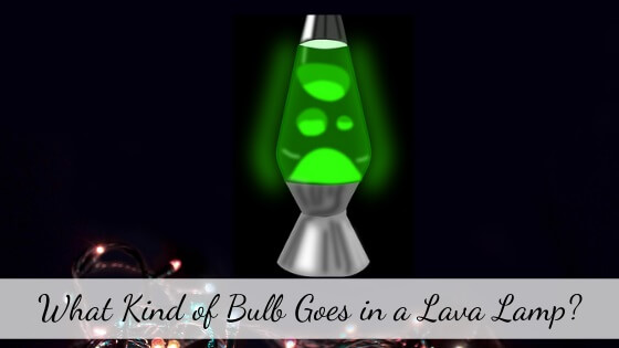 what kind of bulb goes in a lava lamp